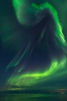 Northern lights fill sky over Vestfjord, Moskenesøy, Lofoten Islands, Norway