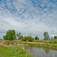 Hyalite Creek flows beside pastures and cottonwood trees in Montana's Gallatin Valley, near Bozeman.