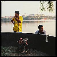Vietnam | Lifestyle | Animals & Pets