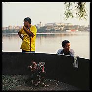 Chicken fight along Truc Bach Lake in Hanoi, Vietnam, Asia