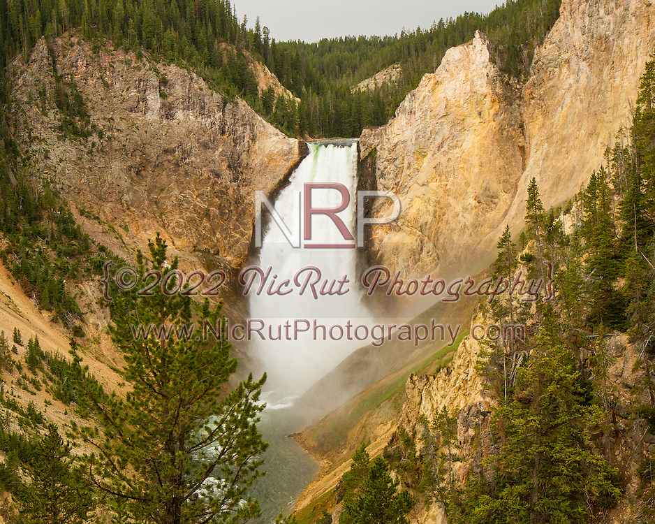 August 8, 2014: Yellowstone National Park Vacation 2014 - Day 6