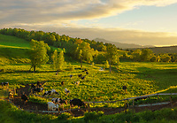 Gorgeous late afternoon light over farm fields during springtime in Waterbury Center, Vermont, USA
