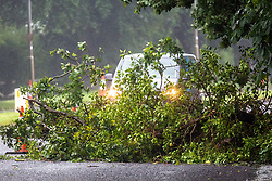 © Licensed to London News Pictures. 06/07/2021. Leeds UK. A fallen tree blocks a road in Bramhope near Leeds this morning as the UK continues to be battered by storms. Photo credit: Andrew McCaren/LNP