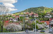 Limanowa (woj.  małopolskie) 07.05.2016. Miejska Góra na szczycie której znajduje się wysoki krzyż, zwany Krzyżem Jubileuszowym.