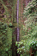 Kapaloa Falls, Kohala Ditch Trail, Kohala waterfall, Big Island of Hawaii