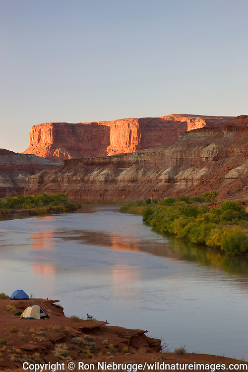 The Green River and the Labyrinth Campground site B, along the White Rim Trail, Island in the Sky District, Canyonlands National Park, near Moab, Utah.