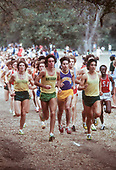 1977 Pac-8 Cross Country Championships