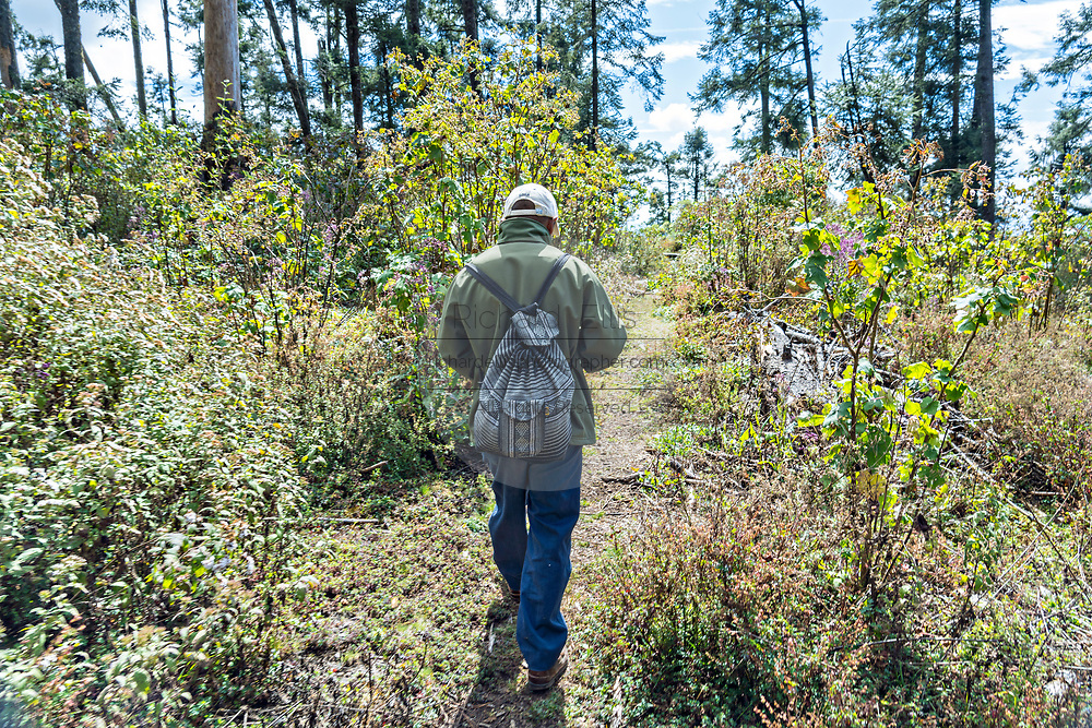 A forest guardian patrols the Sierra Chincua Biosphere Reserve looking for illegal loggers and poachers January 20, 2020 near Angangueo, Michoacan, Mexico. The monarch butterfly migration is a phenomenon across North America, where the butterflies migrates each autumn to overwintering sites in Central Mexico.