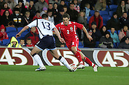Sam Ricketts of Wales. Wales v Scotland, friendly international football match at the Cardiff City stadium, Cardiff, Wales, UK on Sat 14th Nov 2009.  pic by Andrew Orchard, Andrew Orchard sports photography