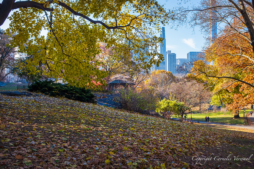 Autumn colors in Central Park with a view of The Dene Summer House and the Mid-Manhattan skyline