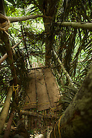 Canopy platform constructed from poles and tied to trees with rattan vines - used by Tim Laman and Edwin Scholes for photographing and filming Wallace's Standardwing Bird of Paradise.