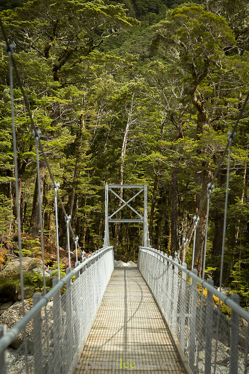 View of a metal footbridge in a forest at the beginning of the Routeburn Track, Routeburn Shelter, South Island, New Zealand