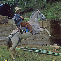Senor Richard Rey Cotrima, a village leader in Yamblon, Peru, rears his horse in the village common area.