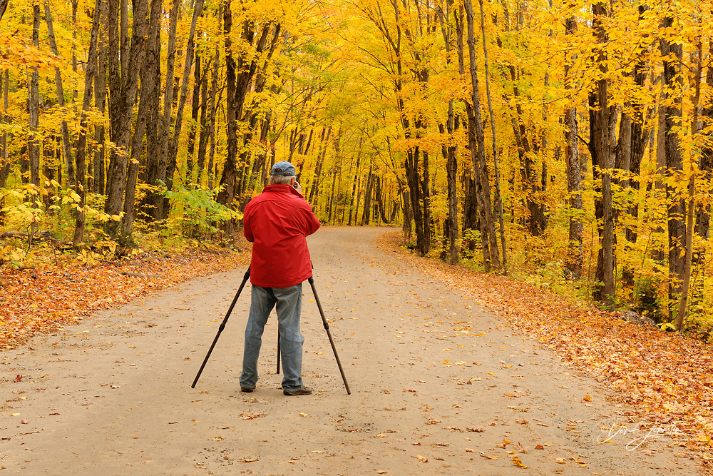 Photographer with tripod on the Arowhon Road in autumn scene, Algonquin Provincial Park, Ontario, Canada