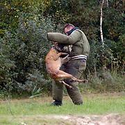 NLD/Huizen/20061013 - Politiehonden en begeleiders wedstrijd, pakwerker word gepakt door een hond
