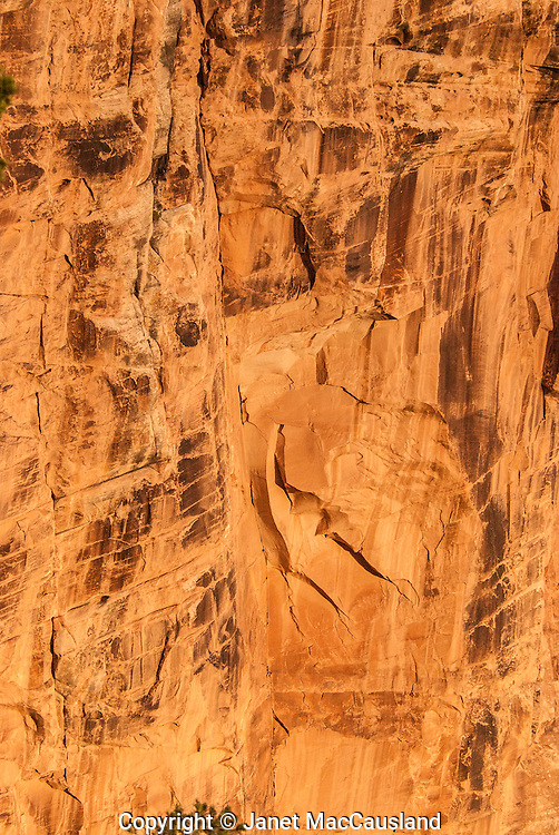 An orange Grand Canyon rock face confronts hikers soon after beginning the Bright Angel Trail.