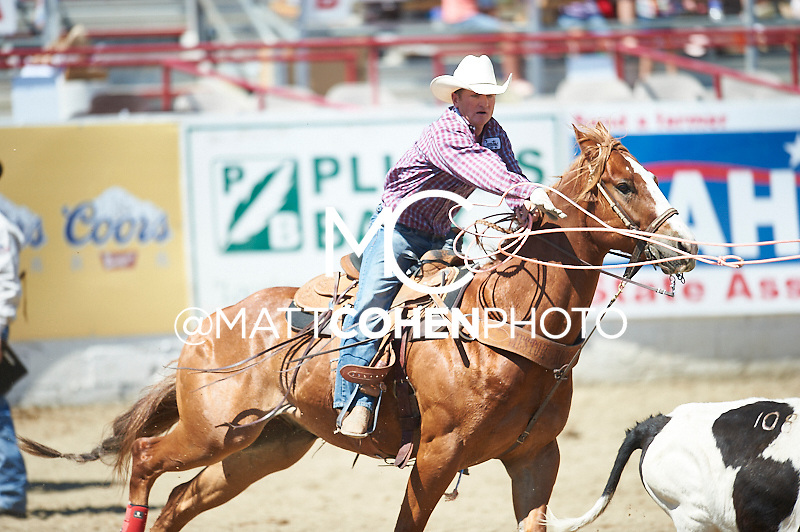 Team roper Jay Tittel of Pueblo, CO competes at the Redding Rodeo in Redding, CA<br /> <br /> <br /> UNEDITED LOW-RES PREVIEW<br /> <br /> <br /> File shown may be an unedited low resolution version used as a proof only. All prints are 100% guaranteed for quality. Sizes 8x10+ come with a version for personal social media. I am currently not selling downloads for commercial/brand use.