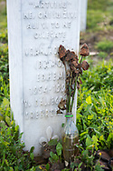 """Dead roses rest at a grave at the Srebrenica Genocide Memorial, also called the """"Srebrenica-Potočari Memorial and Cemetery for the Victims of the 1995 Genocide"""". Located near Srebrenica, Bosnia, the cemetery is the resting place for more than 6000 people."""