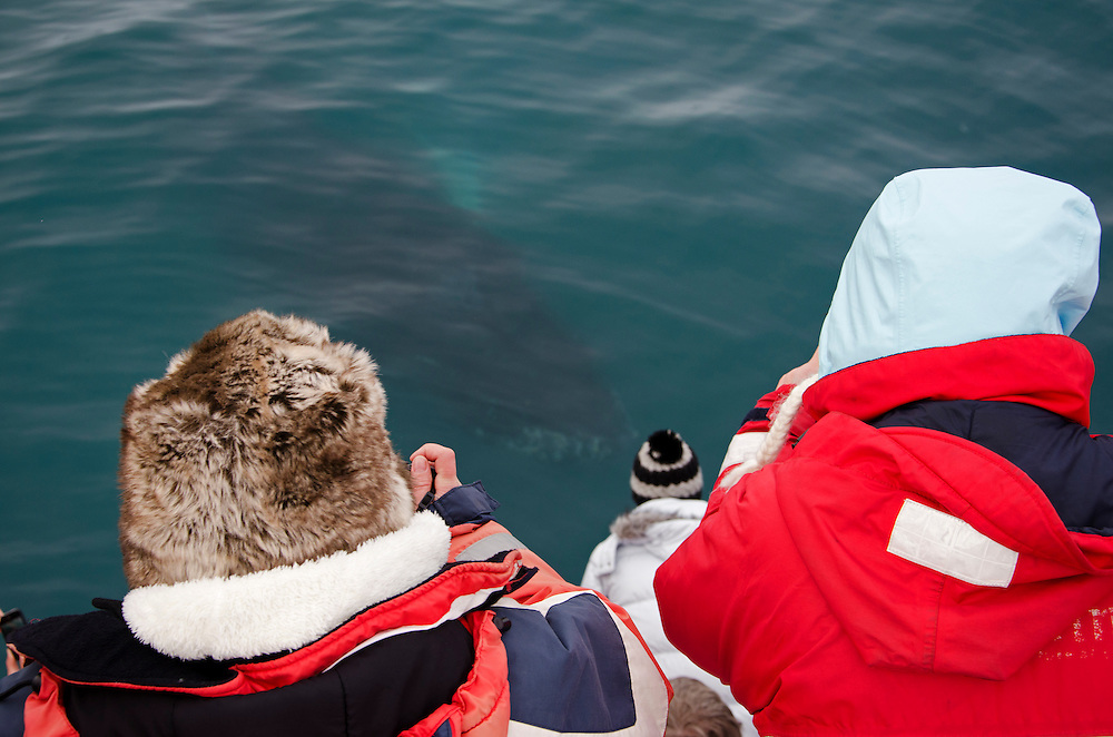 Taken off the coast of Grindavik