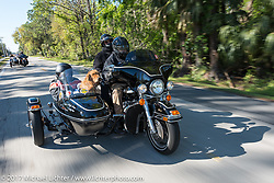Skyler Keim-Jones of Lake Mary, FL rides in the sidecar of Ralph Orlando's 203 100th Anniversary Edition Elctra Glide Classic with Ralph's dog Smokey on the Annual MDA Women's ride during Daytona Bike Week. Ormond Beach, FL. USA. Thursday March 16, 2017. Photography ©2017 Michael Lichter.