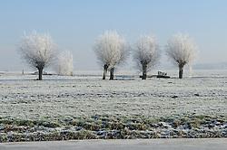 winter snow, sneeuw, winter, cold, wit, white