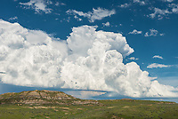 It was a beautiful day for a storm chase. Visibility was great and storms were visible a long ways off. The updrafts were crisp and puffy underneath a dark blue sky. This was at the Wyoming/Montana stateline near Biddle.