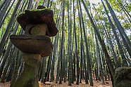 Kamakura Images Gallery