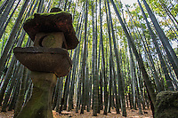 """Hokokuji Bamboo Garden, sometimes call """"the Bamboo Temple"""" because of its large bamboo grove, was once the family temple of both the Ashikaga and Uesugi clans. The temple and its gardens were established by Zen scholar and monk Tengan Eko, posthumously named Butsujo Zenji."""