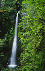 United States, Washington, Olympic National Park, Marymere Falls