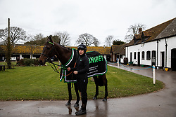 Buveur D'Air with his stable hand Hannah Ryan poses for the media during the visit to Nicky Henderson's yard at Seven Barrows, Lambourn.