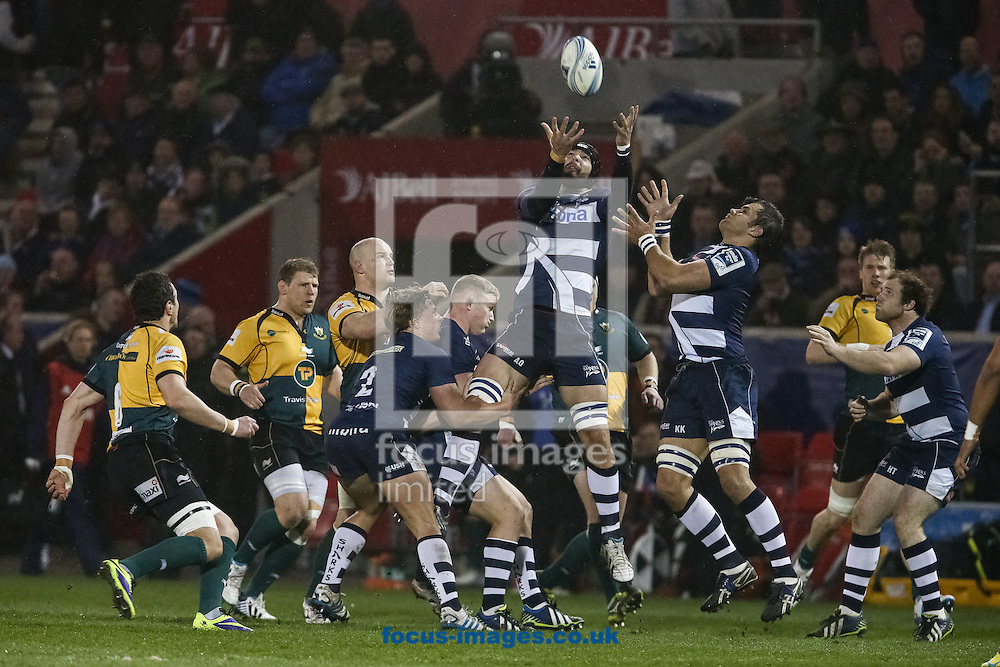 Andrei Ostrikov of Sale Sharks (centre) jumps for the ball during the Amlin Challenge Cup match at AJ Bell Stadium, Eccles<br /> Picture by Andy Kearns/Focus Images Ltd 0781 864 4264<br /> 03/04/2014