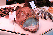 Monkfish displayed on ice of fishmonger stall, Mercado San Miguel market, Madrid city centre, Spain