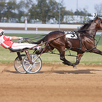 Standardbred Racing at The Red Mile