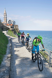 Mountain bikers riding bikes on narrow footpath by railing with castle in background by sea