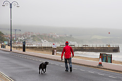 © London News Pictures. 02/06/2015. United Kingdom, Swanage. Adog walker wrapped up. Grey skies cover the sky over a windy seafront at Swanage, Dorset, on June 2, 2015. Photo credit: LNP