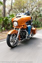 Matt King riding through Tomoka State Park on the special 2014 HOG custom bike project during Daytona Bike Week, FL, USA. March 9, 2014.  Photography ©2014 Michael Lichter.