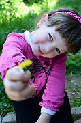 Young girl of 6 with outstretched hand offers a flower