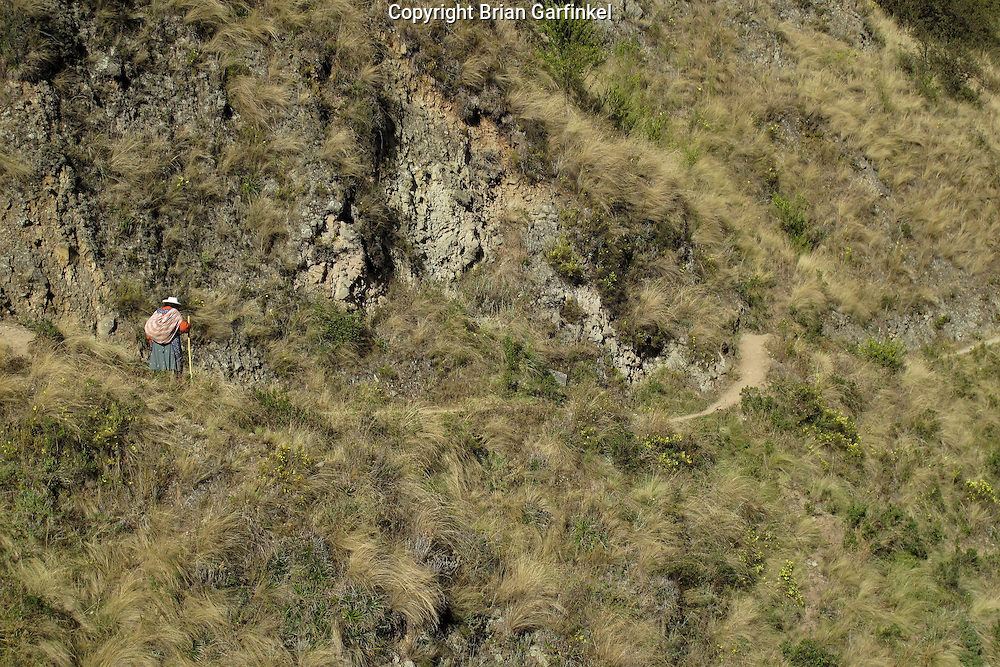 An elderly women walks a narrow path on a hillside outside of Cusco Peru