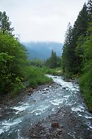 Sandy River near Welches, Oregon.