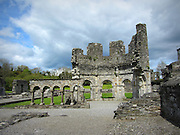 Old Mellifont Abby Louth, c.10th century a.d