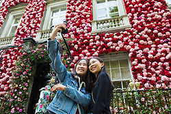 Two women take a selfie against the spectacular floral backdrop. Celebrating the Chelsea Flower Show, after its recent £55 million facelift Annabel's Nightclub in Berekeley Square, Mayfair, has its entire facade covered in pink and red flowers. London, May 24 2018.