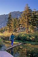 Hiker crossing a stream on a fallen tree, Inyo National Forest, Eastern Sierra, California