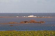 Tidal surge damage, Cley Reserve, Norfolk 2013