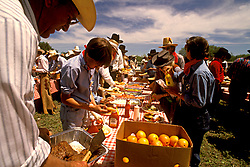 Stock photo of a group of people preparing fresh food at a picnic
