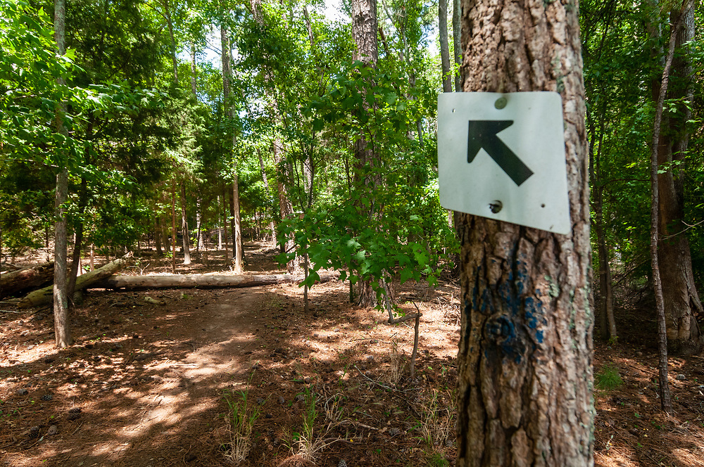 Marker for a hiking trail at Dreher Island State Park in Prosperity, South Carolina on Sunday, August 2, 2020. Copyright 2020 Jason Barnette
