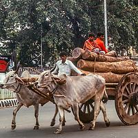 An ox cart carryin lumber trots down a street in  Dhaka, Bangladesh in 1977.