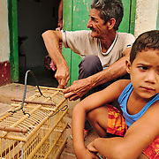 Man building a bird cage, and teaching the grandson along the way
