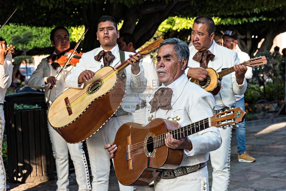 A traditional Mexican mariachi band plays in the Jardin in San Miguel de Allende, Guanajuato, Mexico.