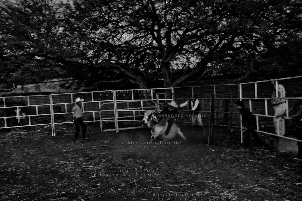 ENG:<br /> Rodeo participant are not expert, they will keep riding for a short time.<br /> ITA:<br /> Ipartecipanti al rodeo non sono esperti, le loro cavalcate durano poco.