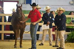 Bernard Fonck, (BEL), Sail On Top Whizard - Horse Inspection Reining  - Alltech FEI World Equestrian Games™ 2014 - Normandy, France.<br /> © Hippo Foto Team - Dirk Caremans<br /> 25/06/14